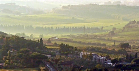 Wineries near Frascati