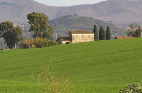 Countryside near Lanuvio
